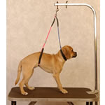 Proguard Pet No Sit Haunch Holder Dual Loop